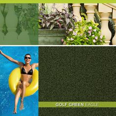 Golf Green - Eagle