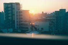 フィルムカメラとわたし。 – Discover PhotoLife