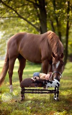 Baby pictures newborn country horses ideas for 2019 Cute Horses, Pretty Horses, Horse Love, Beautiful Horses, Animals Beautiful, Animals And Pets, Baby Animals, Funny Animals, Cute Animals