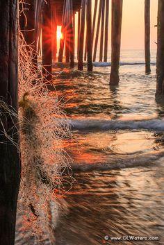 Sunrise shining through fishnet caught on Kitty Hawk peers pilings.