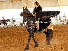 Pin by dawne clayton on breyer pinterest horse costumes horse pin by dawne clayton on breyer pinterest horse costumes horse and miniature ponies solutioingenieria Gallery