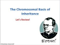 Another Great one from Science Stuff! Advanced Placement (AP) Biology Review PowerPointTopic:  The Chromosomal Basis of InheritanceKeywords: Advanced placement biology, test pre...