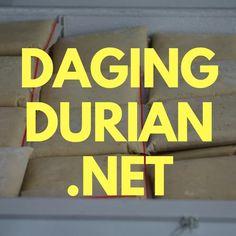 Gudang Daging Durian Medan Terlegit di Konawe Utara