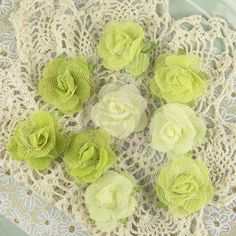 Lime ヨ Champagne Rose Collection