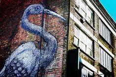 Heron Graffiti