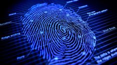 The fingerprint scanner has easily become a regular feature seen even on midrangers. But, for some unexplained reason, there are still a few smartphones out there, in the upper midrange or flagship range, that don't have a fingerprint sensor on them. Black Mirror, Chennai, Microsoft, Application Ios, Dna Fingerprinting, Criminal Record, Finger Print Scanner, Forensic Science, Victoria