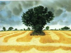 Tree by David Gentleman