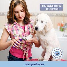 Tu amigo de 4 patas lo merece  ¡Y SI NO TE GUSTA, LO DEVUELVES! Samsung, Pets