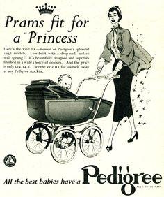 Pedigree Pram  Excellent for some men and women http://www.geojono.com/