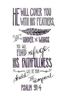 Psalm 91:4 pues te cubrirá con sus alas, y bajo ellas estarás seguro. ¡Su fidelidad te protegerá como un escudo!