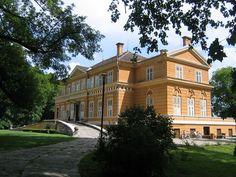 Castelul regal de la Săvârșin.