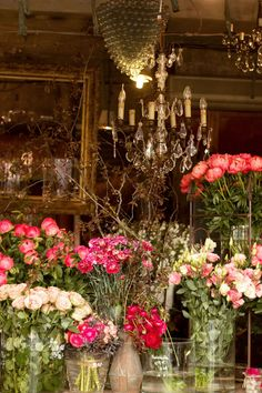 Best Paris plant and flower shops L'arrosoir