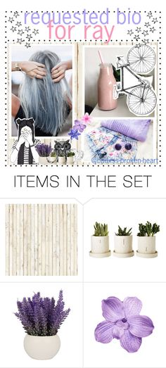 """""""Requests;;Bio // O3.16.17"""" by badxss-broken-heart ❤ liked on Polyvore featuring art and pbslovelysummertips"""