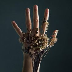 hand photography Floral hand by Xelistroll Photomontage, Hand Fotografie, Hand Photography, Surrealism Photography, Surreal Art, Photo Manipulation, Art Inspo, Character Inspiration, Art Reference