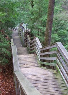 Iargo Springs on the Ausable River near Oscoda, MI.  over 300 steps.  Done it many a times.  beautiful scenary.