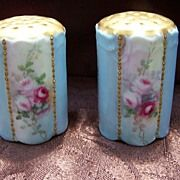 Sweet Victorian Bavarian Salt & Pepper Shakers decorated with Roses and Gold & signed 'Ruth M Fergenson'' Salt Pepper Shakers, Salt And Pepper, Salt Of The Earth, Painted Porcelain, Hand Painted, China Tea Cups, China Painting, China Patterns, Pillar Candles