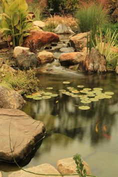 Fish Ponds|Pond Portfolio|Pond Contractor|Morris County - NJ - Atlantis Water Gardens
