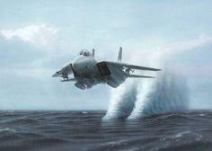F14 Fighter Aircraft (F 14 Tomcat) .jpg by gsb_viva, via Flickr