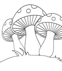 313 Imágenes Fascinantes De Hongos Mushroom Art Mushrooms Y Drawings