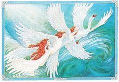 Legende irlandeze--The Children of Lir--Copii lui Lir. Cygnus Olor, Irish Mythology, Mute Swan, Fairytale Art, Gods And Goddesses, Dark Art, Storytelling, Fantasy Art, Fairy Tales