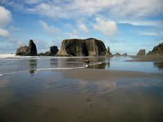 A beautiful day at Bandon Beach. This photo was taken on a November afternoon on the coast in Bandon, Oregon with my labradoodles.