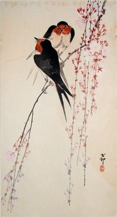 chinese painting swallow - Google Search