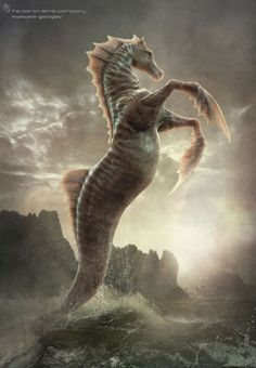 hippocampus mythology - Cerca con Google