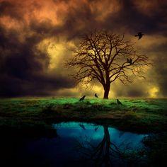 dark soul by Barbara Florczyk, via 500px