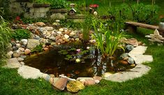 Backyard oasis pond beautifully landscaped with lilies and waterfall