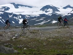 Fire fine og lette sykkelturer - Vektklubb