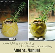 "Auto Versus Manual Camera Settings"" same positioning and lighting, but different camera settings - the difference is incredible!"
