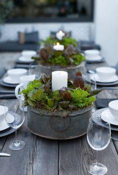 Stilvoll, elegant und bodenständig eingedeckt. Für ein Abendessen im Freien mit Flair und Wohlfühlfaktor. Ausgefallene Dekoration: Verzinkte Kübel mit Babysalat und weißen Kerzen. Moderner Landhausstil.