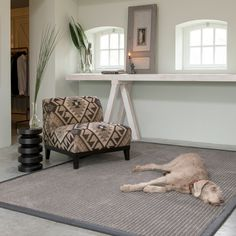The combination of European designed rugs paired with quality New Zealand wool create a beautiful yet comfy rug for your home and dog. Wool Rug, Entryway Tables, Comfy, Dog, Create, Furniture, Beautiful, Home Decor, Diy Dog