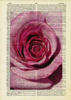 rose - farmers market rose printed on page from vintage dictonary. $12.00, via Etsy.