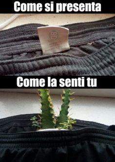 Memes Funny Espanol Chistes Humor 63 New Ideas Really Funny Memes, Stupid Funny Memes, Funny Relatable Memes, Haha Funny, Funny Cute, Funny Texts, Funny Stuff, Hilarious Quotes, Memes Do Dia