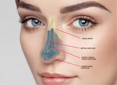 Are you searching for rhinoplasty in Gurugram? Suman's Cosmetic Surgery & Skin Clinic is one of the best clinics for rhinoplasty in Gurugram. Nose Plastic Surgery, Nose Surgery, Nose Job Cost, Nose Reshaping, Rhinoplasty Surgery, Cosmetic Procedures, Cosmetic Clinic, Skin Clinic, Cosmetics
