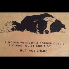 A house without a border collie is clean, quiet and tidy... But NOT HOME!