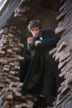Newt from fantastic beasts and where to find them