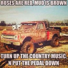 Yup, yup, yup.... mud boggin, country music, fireball and laughter.... that's all I need! ;)