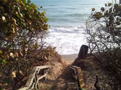 A walkway down to the beach www.youtube.com/richardsites
