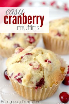 Cranberry Muffins Recipe  -- Since cranberries are cheap everywhere right now, they are the perfect frugal breakfast idea.