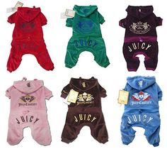 Juicy Couture Dog Tracksuits - Gia has the purple one =)