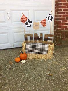 Farm/barnyard/fall Birthday Party Ideas | Photo 8 of 80 | Catch My Party