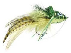 I readily admit an obsession to fly fish for Bass. Topwater flies, suspending minnows, and sinking lines, I like them all, and every technique produces some nic