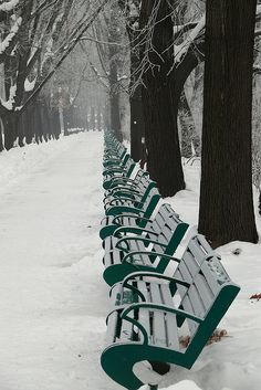 Benches in snow, Bucharest, Romania
