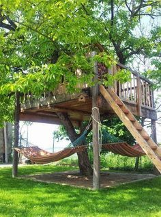Great backyard tree House and Hammocks   Outdoor Areas