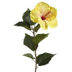 Artificial Hibiscus Stem - Yellow  LOVE these flowers!