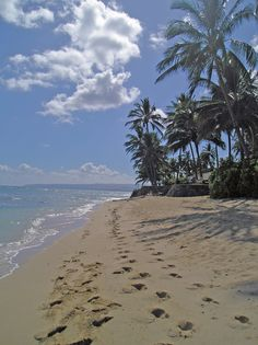 I found a picture of my own front yard (...beach...) on pinterest!?!