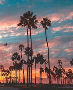 Turquoise sunset.