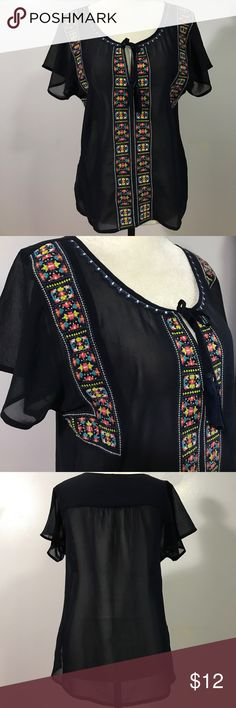 AEO Embroidered Semi-Sheer Top- Med NWOT Beautifully embroidered & detailed- brand new!💕 American Eagle Outfitters Tops Blouses